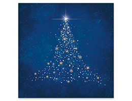 107 Christmas In Blue